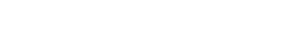 obris global investor summit